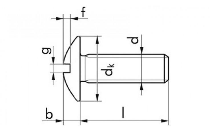 Becherschraube mit Schlitz - A2 - M8 X 20