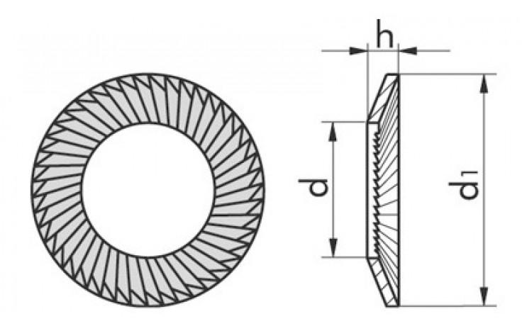 Sicherungsscheibe SCHNORR® - S - A2 - M8