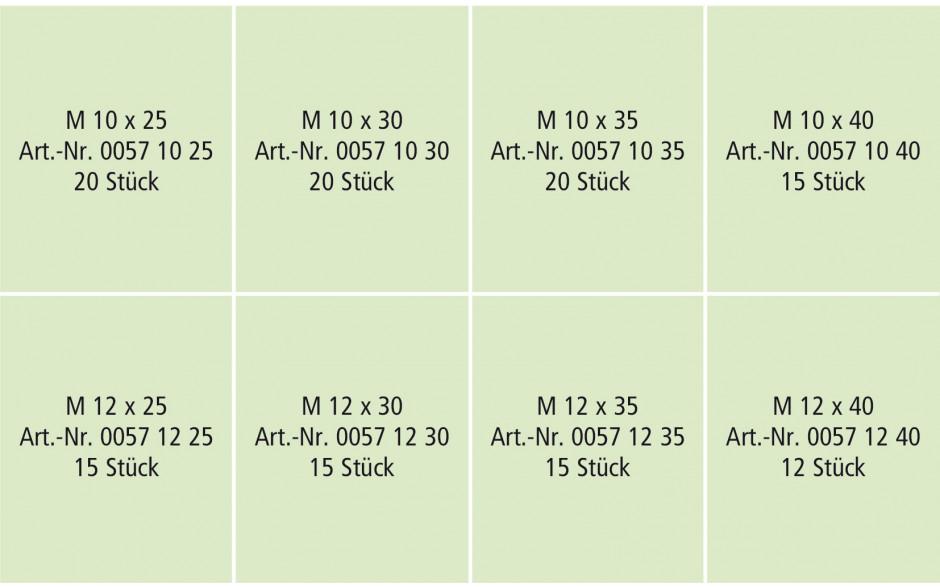 RECA- Sortiment DIN 933-8.8 verzinkt, M10-12, 132-tlg